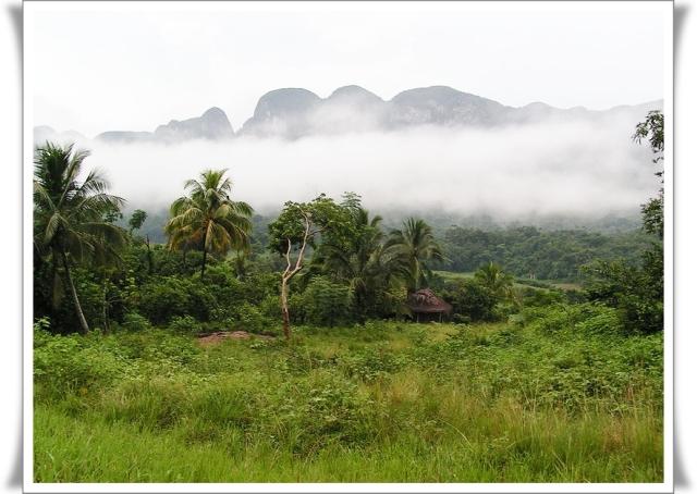 800px-Nebel_im_Valle_des_Vinales,_Kuba