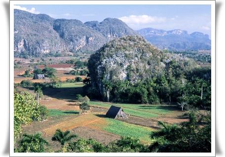 buckman-tina-tobacco-fields-valle-de-vinales-cuba