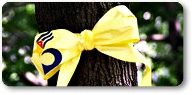 c-cinta-amarilla-03